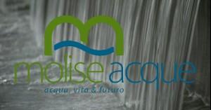 logo_spot